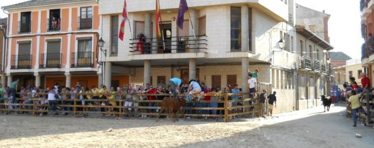 XXX Día de la Provincia de Palencia